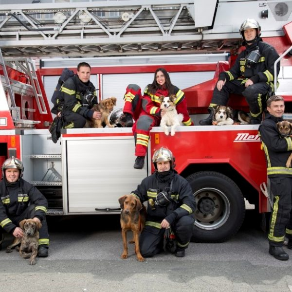 vatrogasci protiv lanca